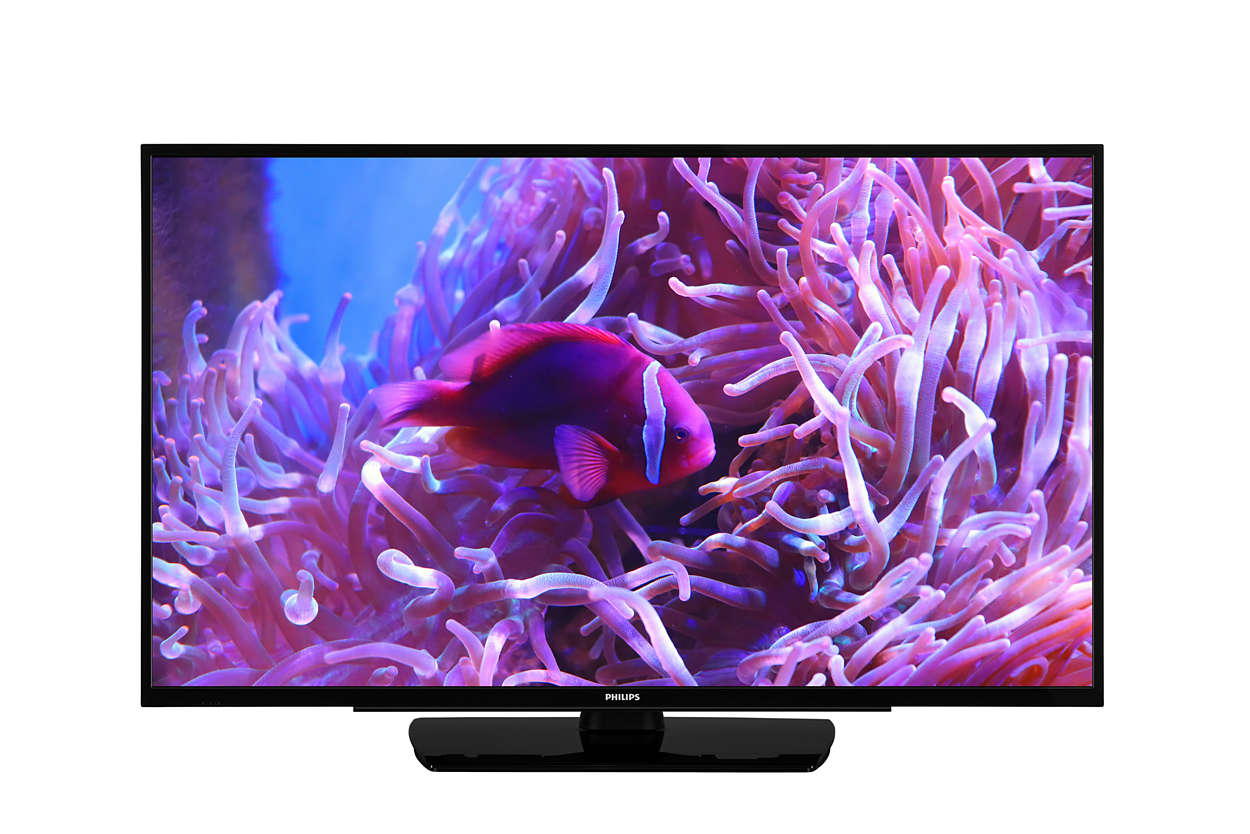 PHILIPS TV 43 43HFL2889S/12