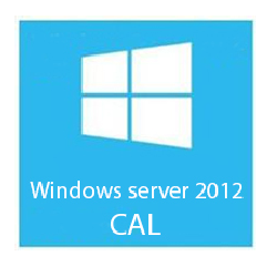 MICROSOFT WIN SER CAL2012 1 CLT USER CAL