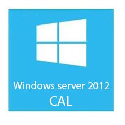 MICROSOFT WIN SER CAL2012 5 CLT USER CAL